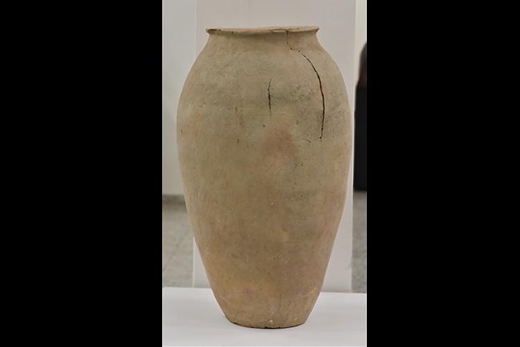 фото Коллекция археологических находок