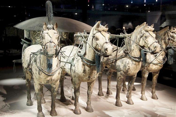 фото Выставка «Культурные памятники Терракотовой армии императора Цинь Шихуанди»
